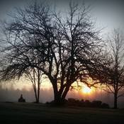 Misty morning sunrise in Boulter, ON