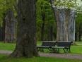 Au Parc Lafontaine ...