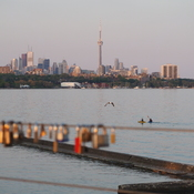 CN Tower & Love Locks & Kayaking for Two