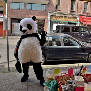Chinatowns Mascot ?