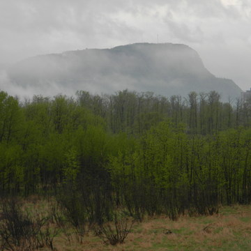 mountain in ythe mist