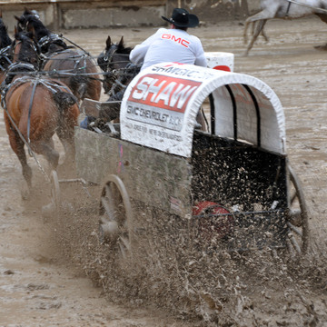 Muddy Chuckwagon race