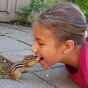 Feeding Chippy