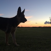 Hotch at sunset