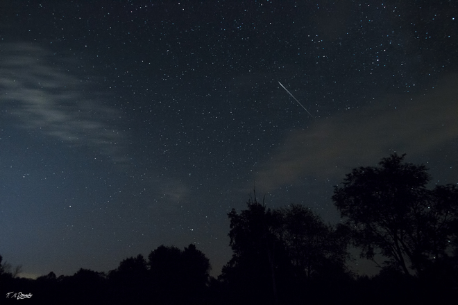 Stunning pictures show shooting stars over Exeter during Perseid Meteor Shower