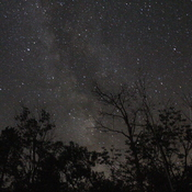 Stars and the Milky Way