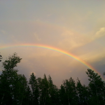 Rainbows In Our Backyard