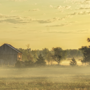 Old Barn in the Morning Mist at Dawn