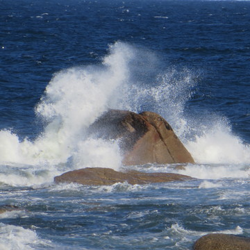 The water is going over the Rocks in Musgrave Harbour
