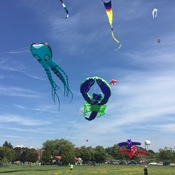 Niagara Windriders Kite Association fun fly