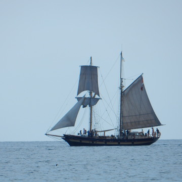 Mutiny on the High Seas (Lake Ontario)