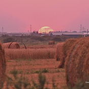 Sunset for the farmers