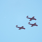 SNOWBIRDS in the AIR