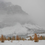 winter came early at Lake Louise