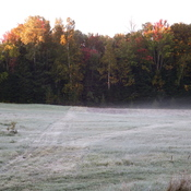 Early morning frost in the field Sept 24th