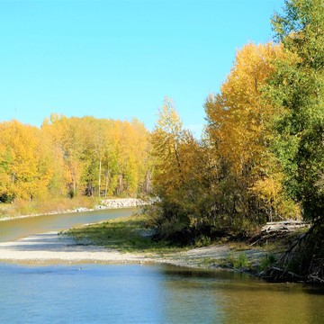 Autumn Colors In Okotoks AB