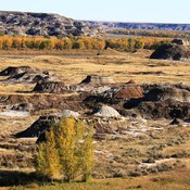 fall on the red deer rvr