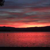 Gellatly Bay sunrise on Okanagan Lake