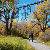 OLDMAN RIVER COULEE IN FALL COLOUR
