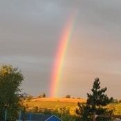 Rainbow in Mount Albert