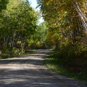 Road in Riding Mountain National Park