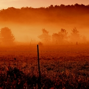 Early Morning Fog Sunrise spells Beauty