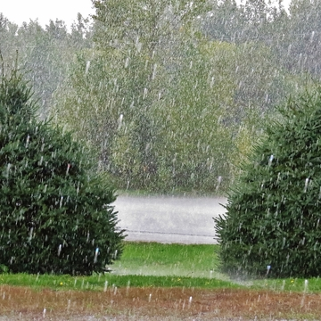 Downpour in North Bay. . . .