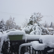 fort st john snow fall