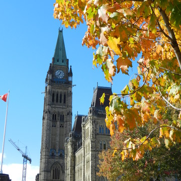 Falling for Ottawa