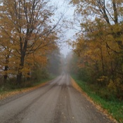 Old Back Roads And Foggy Mornings