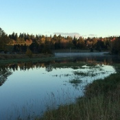 Beautiful fall morning on the pond in HunterRiver,PEI