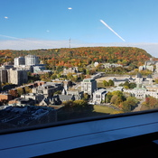 Mount Royal View