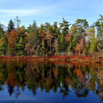 Reflections of fall in Porters Lake Nova Scotia