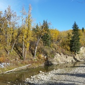 fall in fish creek park