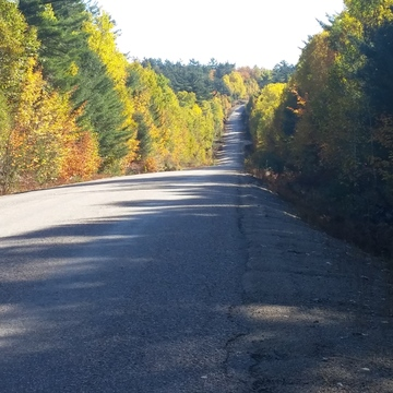 Fall Colours north of Elliot Lake, Ontario