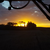 harvest sunset!