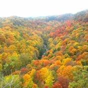 Fall colors Dundas Peak