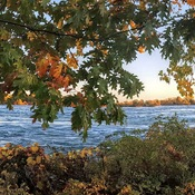 Les Berges du Fleuve St-Laurent GASTON JACQUES