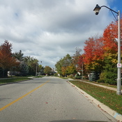 Oakville Street....Fall N Love
