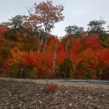 fall in parrysound