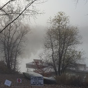 Fog settling over Fort Whyte Alive