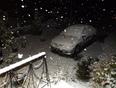 Premiers centim�tres de neige