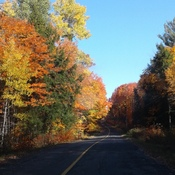 Magnificent fall drive.