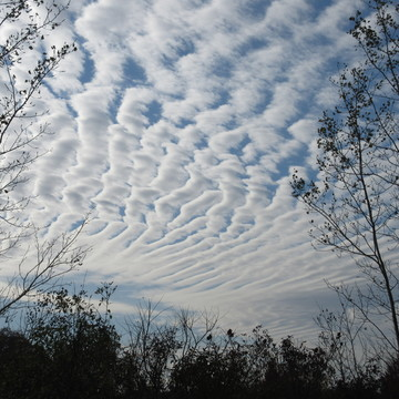 Unusual Cloud Formations
