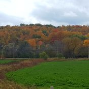 Escarpment view🍁🍂🍃