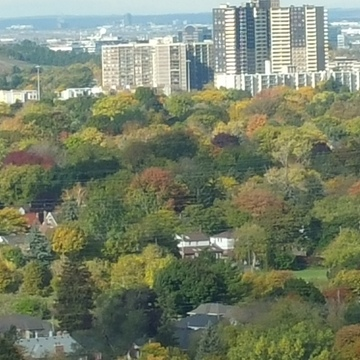 fall colors from our 27 floor belcony