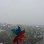 Snowing in Kingston