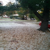 first snow in Hickory Beach