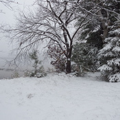First snowfall at the lake. Oct 27th, 2016