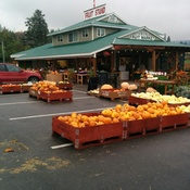 Paynter's Fruit Stand